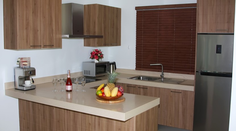 Modern Kitchen 023