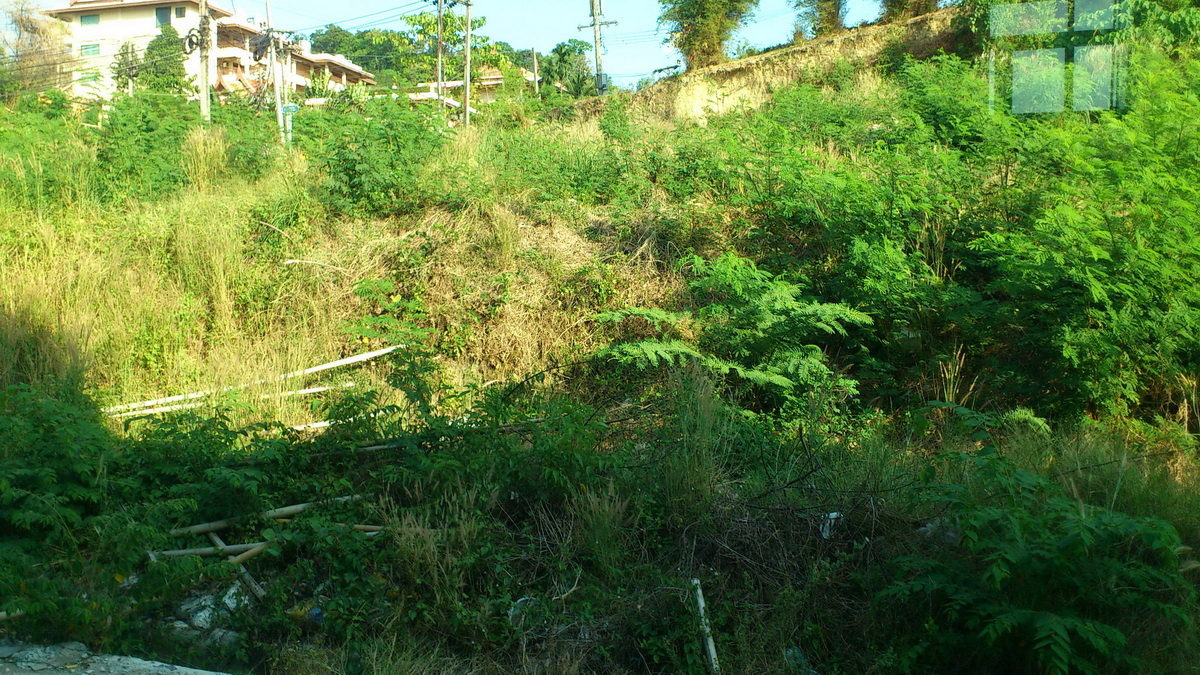 Land mountain view 1,378 Square meter for sale in Patong