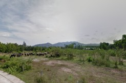 12 Rai Land for sale near Laguna area