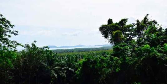 Sea View Land Plot 2,024.34 Sqm. for sale in Cape Yamu