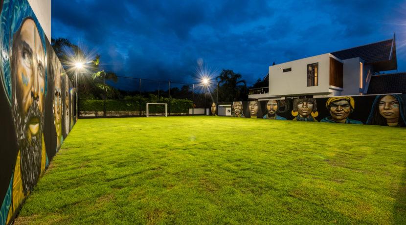 Football Pitch, Paloma07