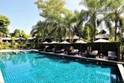 No key money! 100 room hotel in the center of Patong