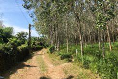 Chanote Title Flat Land 17 Rai for Sale 5.5 MTHB per Rai