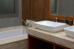 Master Bathroom 017