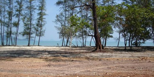 Beach Front Land at Koh Yao Yai Island