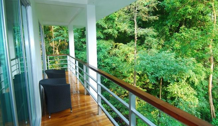Lower floor balcony with jungle view