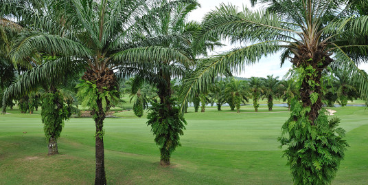 Golf course view Land Plot for sale in Kathu