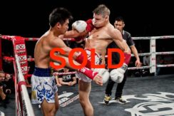 Established Muay Thai Training Camp For Sale In Phuket