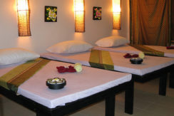Profitable massage shop on 2nd road in Patong for sale
